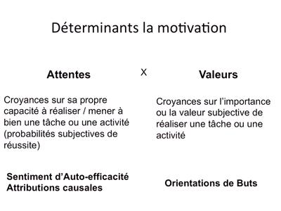 Tricot-Déterminants de la motivation